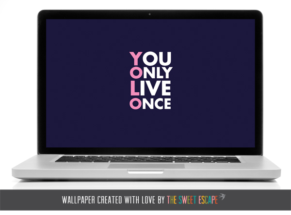 YOLO laptop