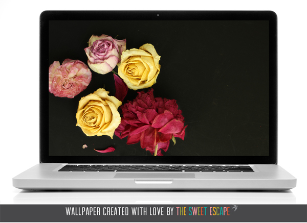 sweet-escape-floral-desktop
