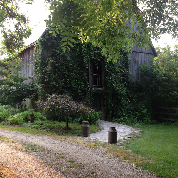Treehouse Heaven Outdoor Living Barn / The Sweet Escape