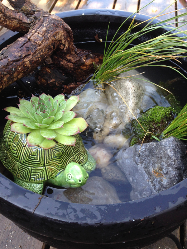 Diy Make Your Own Pond In A Pot The Sweet Escape