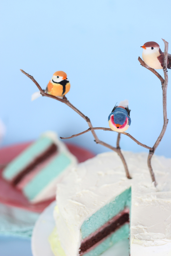 BIRTHDAY WEEK: DIY twig & tweet layered color cake