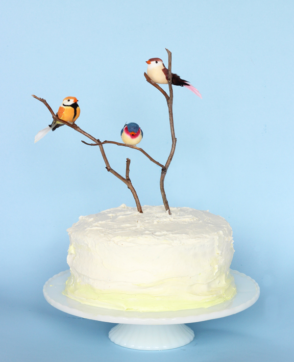Spring Colorful Bird & Branch DIY Cake  by The Sweet Escape