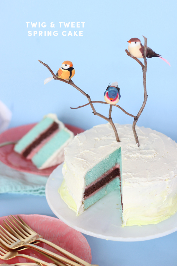 Spring Blue and pink layered cake byThe Sweet Escape