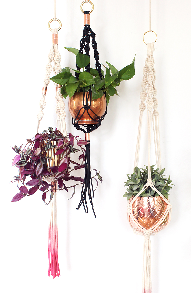 Sweet Escape Workshops - DIY Macrame Plant Hanger