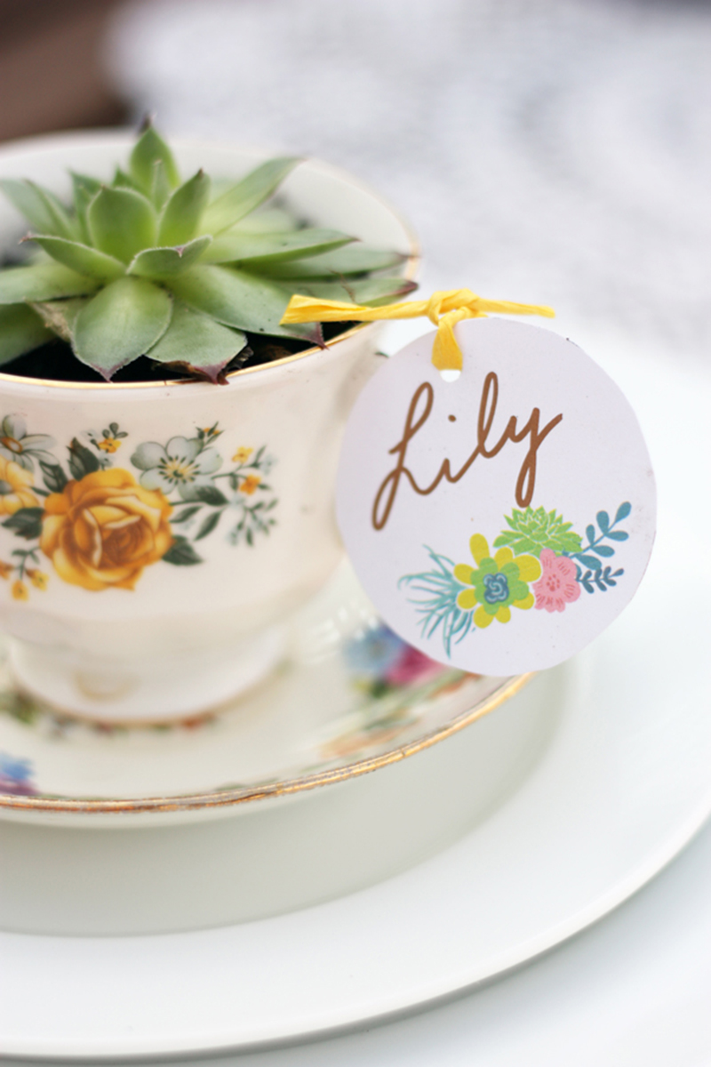wedding name setting succulent vintage tea cup