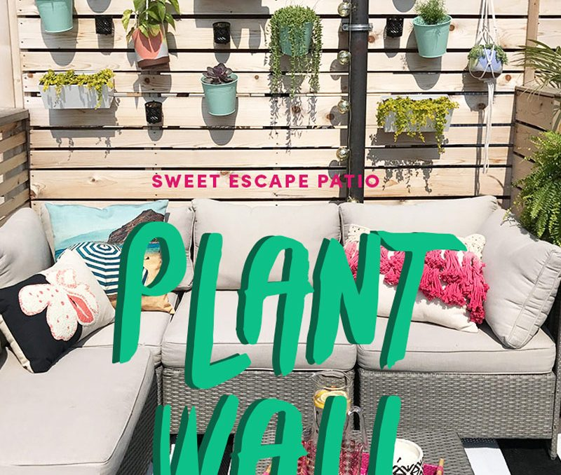 Project Sweet Escape Patio: DIY Plant Wall