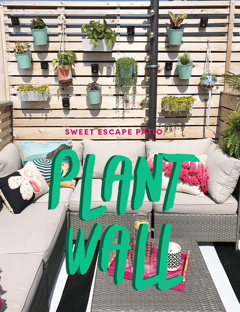 DIY Patio Plant Wall by The Sweet Escape