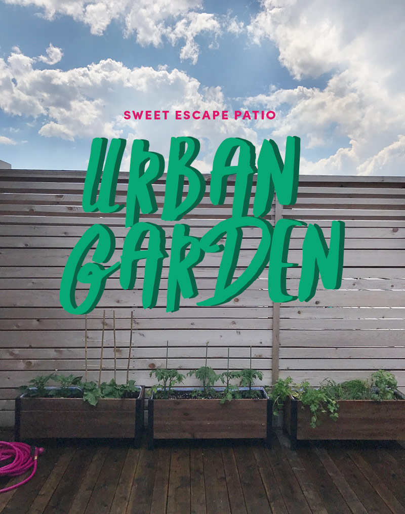 Patio Urban Garden by The Sweet Escape
